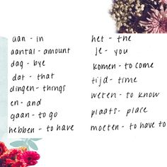 A Little Dutch Dictionary   Free People Blog #freepeople