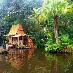 Pin for Later: 39 Disney World Facts That Even Die-Hard Fans Don't Know The Jungle Cruise has actually developed its own self-sufficient ecosystem. Plants in the ride are now native to the jungle and can survive on their own. Survival Tent, Wilderness Survival, Outdoor Survival, Survival Prepping, Disney World Facts, Disney Facts, Jungle Cruise Disneyland, Beach Shack, Haunted Mansion