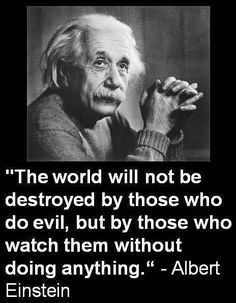 """The world will not be destroyed by those who do evil, but by those who watch them without doing anything."" Einstein"