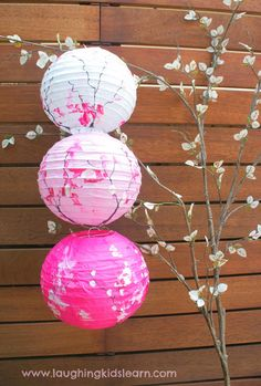 Gorgeous toddler decorated lanterns inspired by cherry blossom trees DIY Paper Lanterns Paper lanter Cherry Blossom Fiesta, Cherry Blossom Bedroom, Cherry Blossom Decor, Cherry Blossom Wedding, Blossom Trees, Cherry Blossoms, Chinese Birthday, Japanese Birthday, Japanese Party