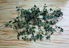Tutorial to make miniature ivy.