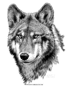 WYUEN 5 PCS Wolf Tattoo Sticker for Men Body Art Women Fake Temporary Tattoo *** Check this awesome product by going to the link at the image. (This is an affiliate link and I receive a commission for the sales) Wolf Tattoo Design, Wolf Tattoos, Wolf Spirit, Spirit Animal, Beautiful Wolves, Animals Beautiful, Tier Wolf, Wolf Sketch, Wolf Wallpaper