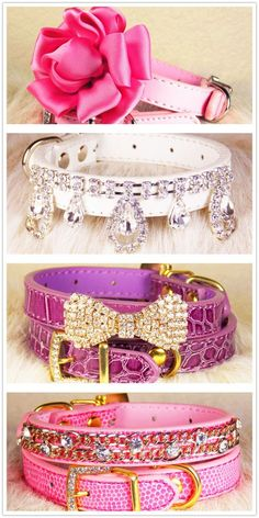 Details about New Croc Crocodile Style Personalized Pet Dog Cat Collar M, S, XS Yorkie, Chihuahua, Pet Dogs, Dog Cat, Pets, Pet Puppy, Led Dog Collar, Crocodile, Dog Jewelry