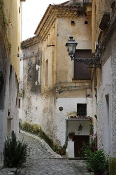 Cetraro, Cosenza, Calabria, Italy. My Grandfather's town.
