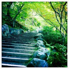 Tofukuji, Kyoto, Japan