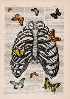 Butterfly collage Upcycled Dictionary Page Upcycled Book by PRRINT