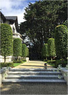 Regent's Garden