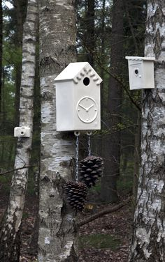 Cor Unum - bird house. Great idea if my cuckoo clock ever dies.