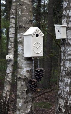 Cor Unum - bird house