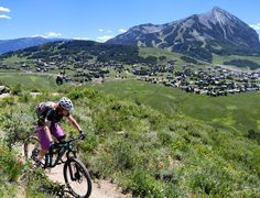 Brittany enjoying the dog days of summer :) #14erskiers #crestedbutte #wildflowers #mountainbiking #mountainbikingisfun #mtbike #mtb