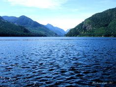 Muchalat Lake  BC Great camping and boating.  Just a few Km's out of Gold River BC