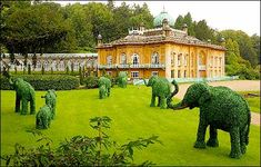 Topiary elephants, Gloucestershire, UK