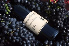 Virginia wine, wineries, and vineyards. Come enjoy the internationally acclaimed wines of Breaux Vineyards. www.breauxvineyards.com
