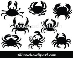 8 crab silhouette vector graphics in PNG, JPG and EPS format easy to edit and scale according to your requirements for print and web graphics. Fish Vector, Vector Clipart, Vector Graphics, Crab Clipart, Silhouette Clip Art, Silhouette Cameo Projects, Silhouette Design, Krebs Tattoo, Stencils
