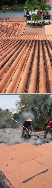 This business has specialists who provide power washing and roof cleaning at an affordable rate. These professionals also offer various services such as painting and carpentry.