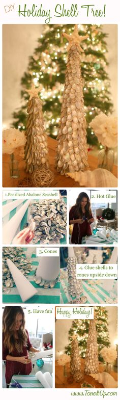 DIY Shell Christmas Tree!