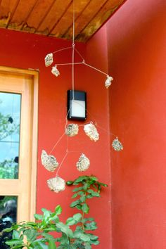 Sharing Nature's Garden: Austin Garden Tour on Saturday May 3 will delight and inspire - such a cool mobile.