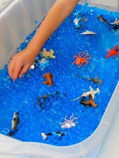 container + waterbeads + water animal toys = fun-fun play time!!