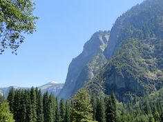 Yosemite National Park – Die grüne Oase