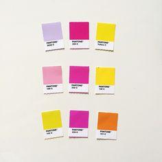 lilac, pink, yellow, orange = love this color palette #pantone