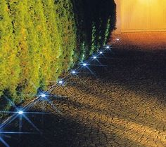 for our new driveway! Backyard Walkway, Driveway Landscaping, Outdoor Landscaping, Outdoor Gardens, Driveway Ideas, Driveway Lighting, Driveway Entrance, Driveway Design, Front Yard Design