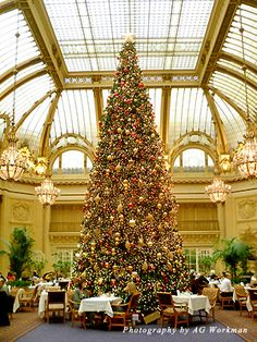 Afternoon Christmas tea in the Garden Court of San Francisco's Palace Hotel is a tradition to continue!