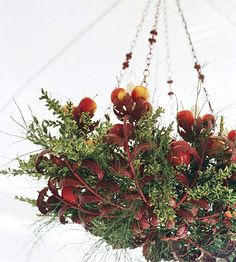 Hanging Boughs:   This chandelier is decked out for the holidays with crab apples and cut branches. Use faux greenery to avoid falling needles.
