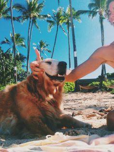 Jay Alvarrez and his dog