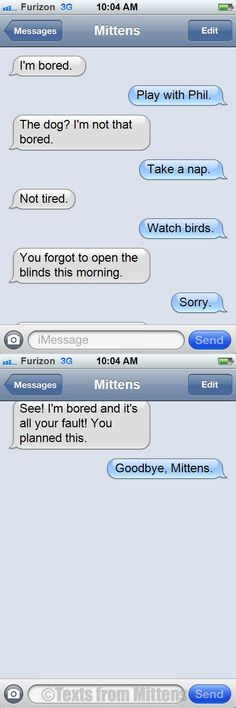 NEW daily Texts from Mittens: The Bored Edition
