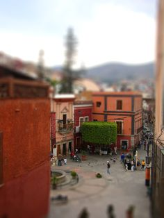 I love miniature anything.  (Miniature Mexico)