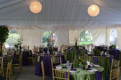 Vintage purple and green. Gold chivary chairs. Laurel Creek Manor| Snuffins Catering| Tacoma| Wedding| Tent|