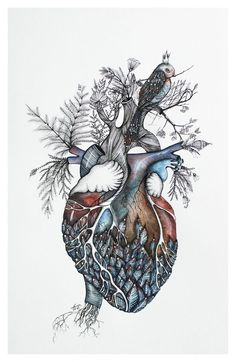 Srdce zimy