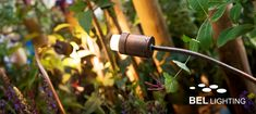 Orientable/flexible LED luminaire made of copper BEL Lighting