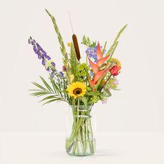 Der alte Meister Vincent van Gogh war ein wahrer Paradiesvogel und ein Verehrer der Sonnenblumen. Wir lieben ja bekanntlich alle Blumen – aber was denkst Du: Sonnenblume: ja oder nein? Erfahre mehr über unseren farbenfrohen Strauß: https://bloomon.de/blog/unsere-blumen/farben-sammeln/