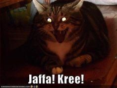 Just hilarious! :) Soooooo....now Gou'ald do cats??