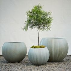 "Durable and lightweight fiber cement forms this spherical planter in a simple shape with a subtle, mossy wash.- Fiberglass, cement, stone powder- Indoor or outdoor use- All weather: can remain outside while planted throughout the winter- Drainage hole included- ImportedSmall: 13""H, 12""D, 15.5"" exterior diameter at widest point, 10"" diameter at mouth, 6.5"" diameter at baseMedium: 15.75""H, 14""D, 20"" exterior diameter at widest point, 12.5"" diameter at mouth, 8"" diameter at baseLarge: 19""H…"