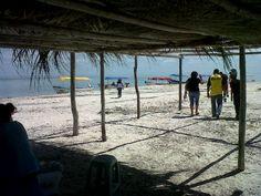 Cayo Arenas - Isla Aguada, Campeche