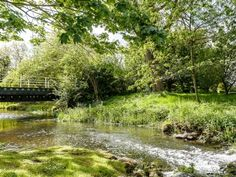 Garden and grounds | Mill Race Apartment, North Elmham