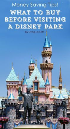What to Buy Before Visiting Disney! Save yourself some money before you go with these Disney Park Must Haves!!