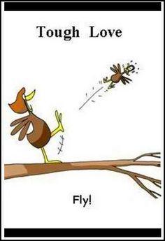 fly abigail!