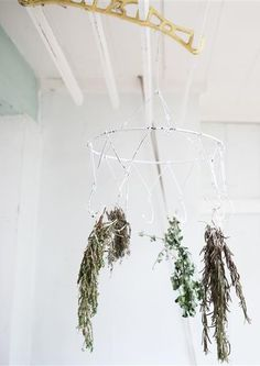 HERB DRYING RACK £6.95 This pretty yet practical herb drying rack look wonderful filled with herbs, allow the aromas of the herbs to drift t...