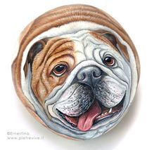 HAND PAINTED ROCK.Dogs portraits on stone. bulldog