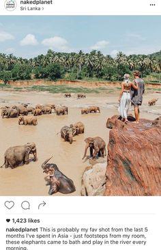 Épinglé par Sue Wick sur Tanzania | Pinterest | Voyage de reve ...