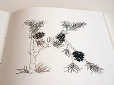 Ugluholt: an alphabet book by  Stella Björg