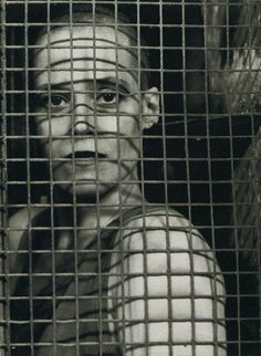 :: Sigourney Weaver is prisoner of our desire ::