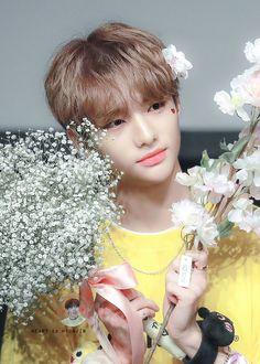 Heart to Hyunjin Lee Min Ho, K Wallpaper, Kpop, Lee Know, Pretty Boys, Boy Groups, Fandoms, Entertaining, Anime