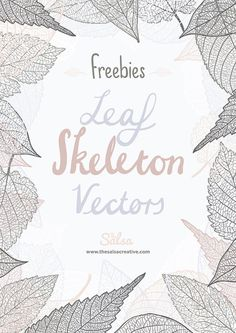 Leaf skeleton free vectors are a set of free leaves that include 6 unique and extremely intricate hand drawn leaf skeleton vectors Free Vector Illustration, Graphic Illustration, Vector Illustrations, Free Vector Graphics, Free Vector Art, Free Design Resources, Free Vectors, Vector Design, Graphic Design