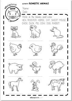 domestic animals printable worksheet free