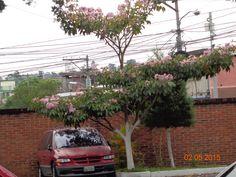 """Parqueo de la casa de formación """"San Buenaventura"""""""