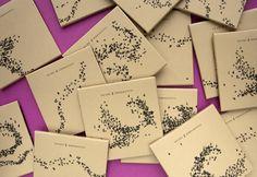 Murmurations - unique CD packaging | Blog | Computer Arts magazine
